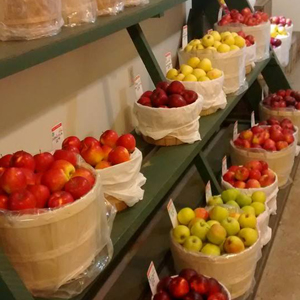 Fresh Apples, handpicked apples, nonwaxed apples, farm apples