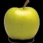 Drummond Farms, Apple Orchard, Apple Picking Ontario, Apple Farm Waterdown, Apple Cider Waterdown, Farmers Market Waterdown