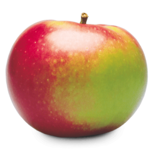 MacIntoshGreen skin with a heavy red cheek on one side; white flesh; mildly tart to sweet as ripened; firm. Used for fresh eating, pies, salads, sauces.